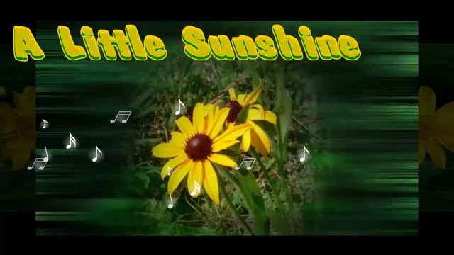 ✿A Little Sunshine ... (music Nicolas de Angelis) ... ...✿